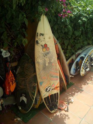 surf al merrick
