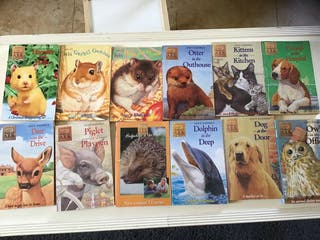 12 English language books young reader animals