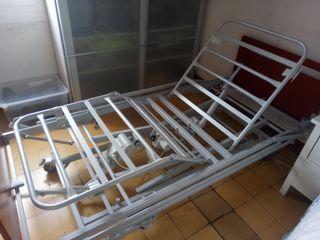 Cama articulada carro elevador Invacare Alegio NG
