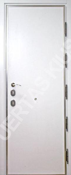 puerta de seguridad grado 5