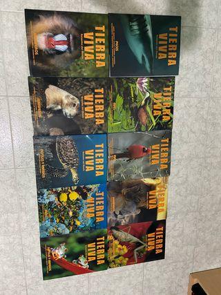 Lote de libros de tierra viva