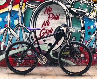 Bici Orbea Asphalt cuadro L llantas 26 aluminio