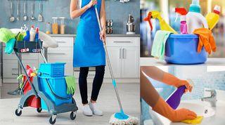 Servicios de limpieza y del hogar