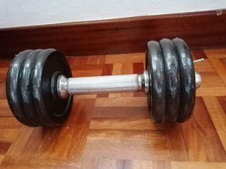 pesa mancuerna gimnasio