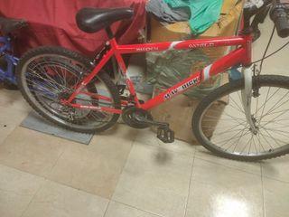 """bicicleta de adulto de montaña de 26"""""""