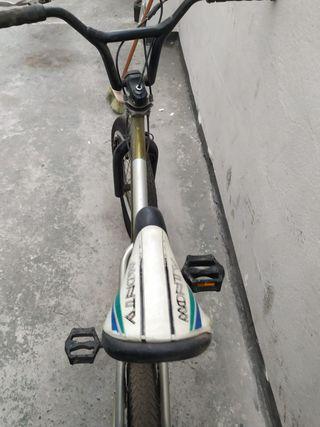 Monty BMX