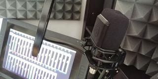 Micrófono de condensador Lewitt LCT 440 Pure