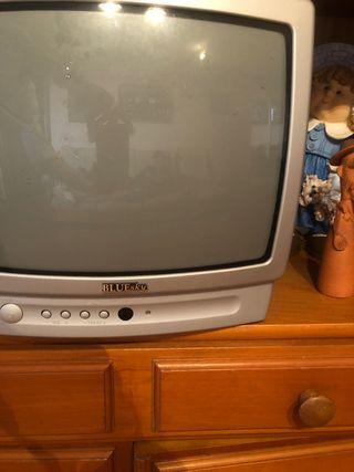 Televisión BLUEsky x Gucci
