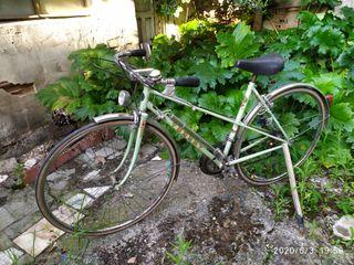 Bicicleta Torrot Clásica