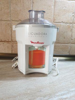 Licuadora Moulinex Multifruit