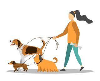 Cuidadora de animales.