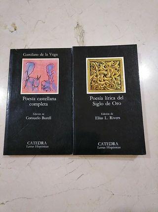 DOS LIBROS DE POESÍA POR 5€.