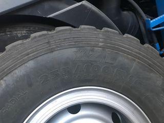 Neumáticos todoterreno 255/100R16