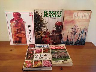 Lote 5 libros
