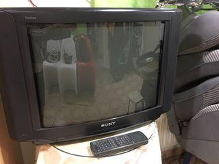 Televisión Sony con culo
