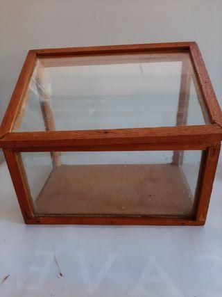 antigua caja de madera y cristal