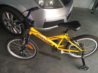 Bicicleta de ñiño