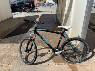 Bicicleta Willier oro puro carbono