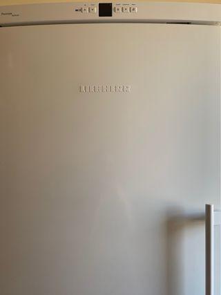 Congelador vertical LIEBHERR GN2866