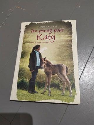 Un poney pour Katy