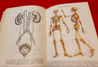 libro antiguo medicina general