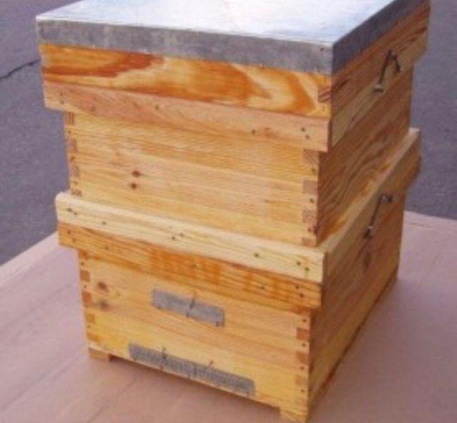 Colmenas de abejas