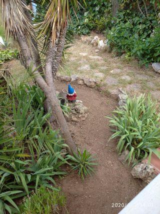 se hacen jardines y tratamiento de maderas