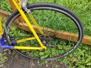 Cambio bici paseo fixie talla 61