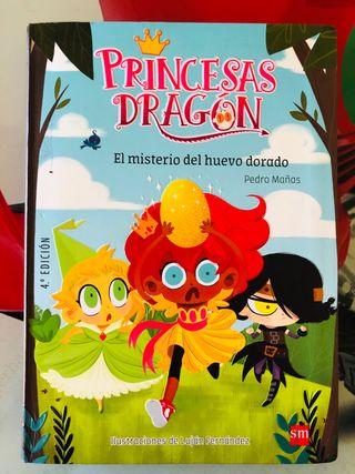 Princesas Dragón 1