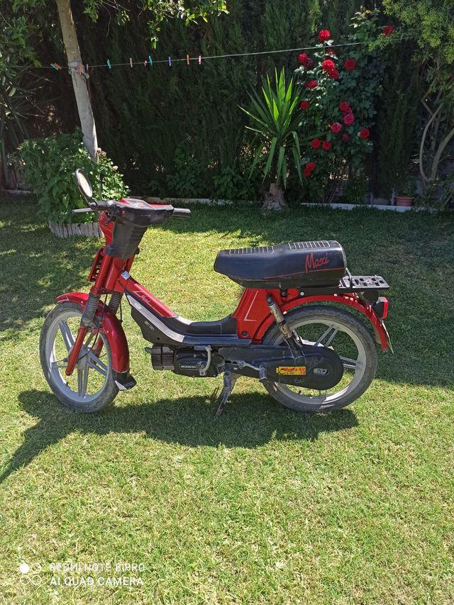 Moto Suzuki Maxi