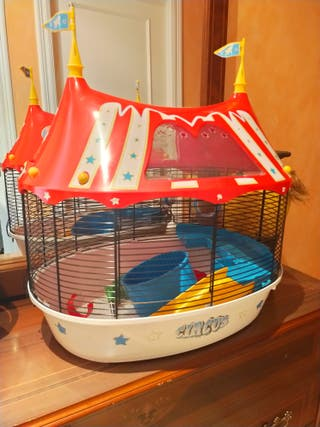 jaula tortuga/ratón