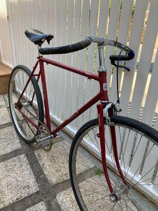 Bicicleta paseo path racer