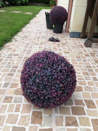 Dos bolas decorativa de arbusto