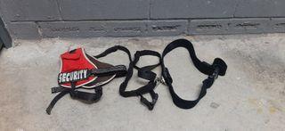 cinturón +arnés canicross