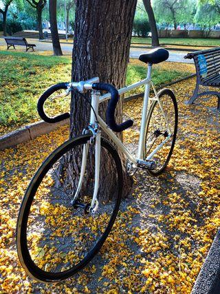 Bicicleta clásica pasada a fixie