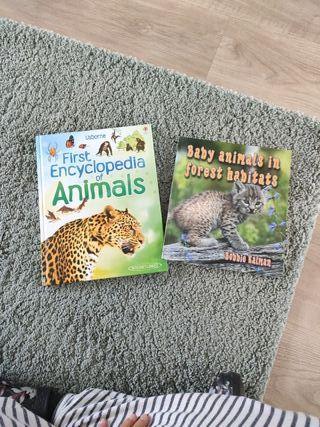 Animals de Usborne y Baby animals un forest