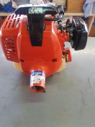 Motor echo