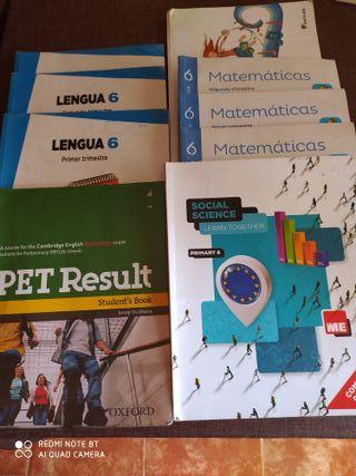 lote libros 6 primaria
