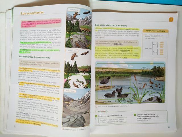 Ciencias Naturaleza Saber Hacer Santillana 5° Prim