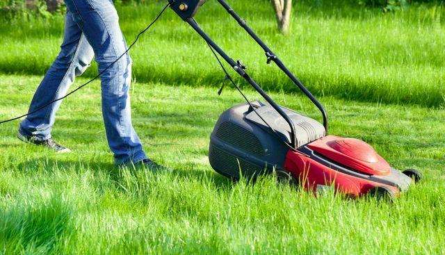 Gardening Services in Manchester