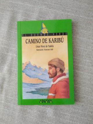 Camino de Karibú. César Pérez de Tudela