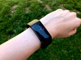 Fitbit Charge 3 Special Edition Smartwatch