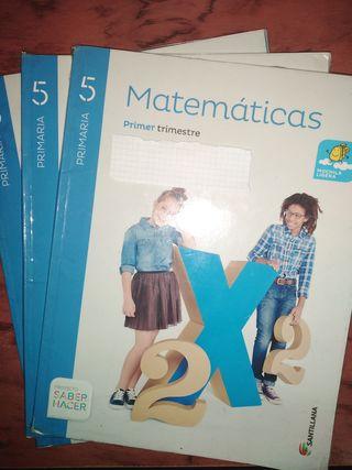 Libro matemáticas 5 primaria santillana