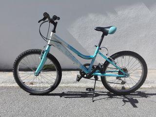 Bicicleta Jl-Wenti de 20*
