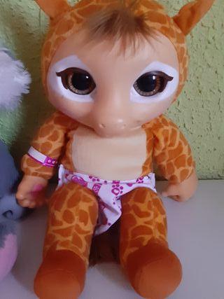 animal baby