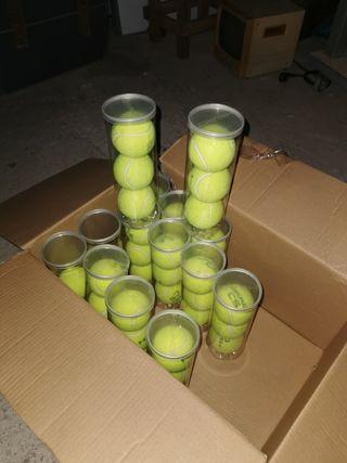 pelotas de paden