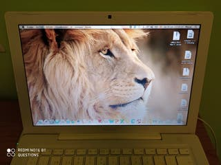 MacBook Lion & Windows 10