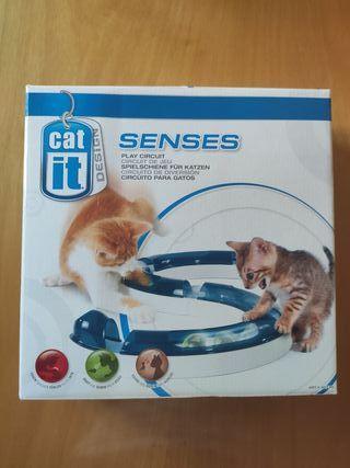 Juguete circuito gato