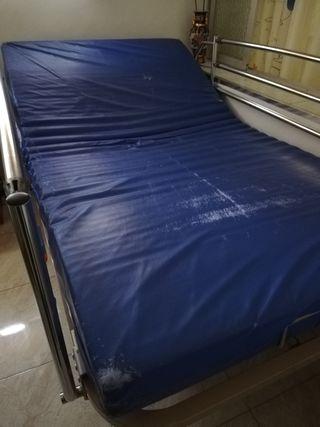 cama articulada marca Bardisa