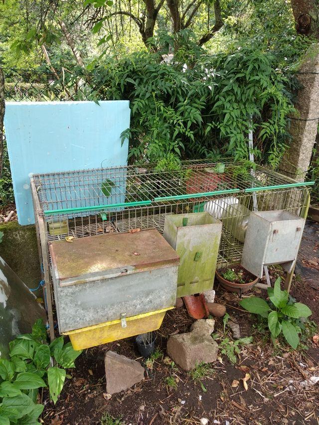 jaula de conejos
